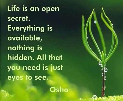 happy-osho-quotes-on-life
