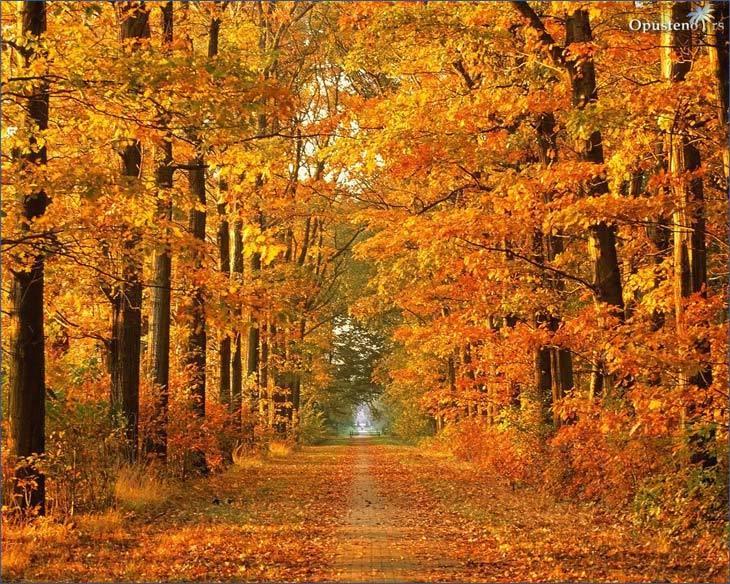 najlepse-slike-jeseni-2