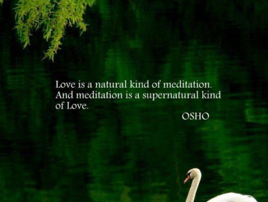 osho love&meditation