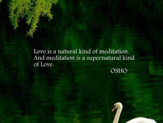 osho love&meditation